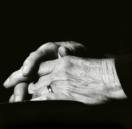 wilton-hands